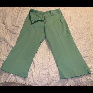 Cold Creek Green Pants Size 14